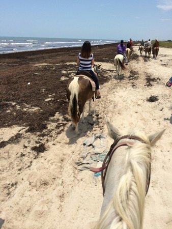 S-n-G Horseback Riding: 7/13/2014