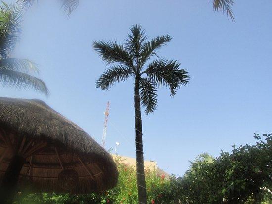 Aventura Mexicana: grounds