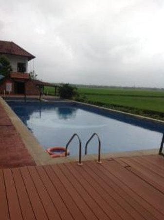 Citrus Retreats Alleppey: Pool