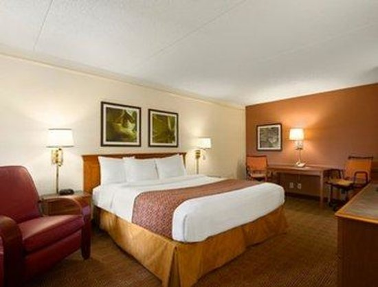 Baymont Inn & Suites Marietta/Atlanta North: Standard One King Bed Room