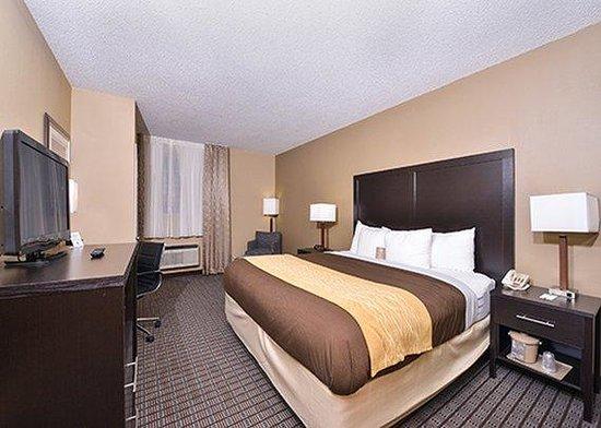 Comfort Inn Lebanon Valley/Ft. Indiantown Gap: Room
