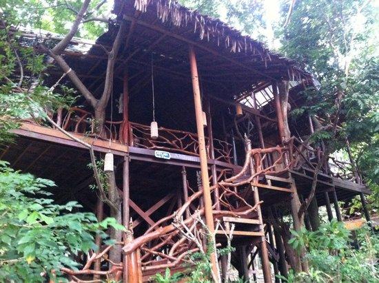 Viking Natures Resort : Max Mai (villa)