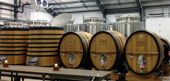 Martian Ranch and Vineyard: The Martian winery
