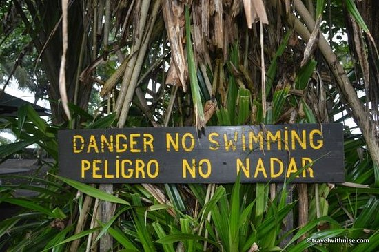 Mawamba Lodge: Beach Warning Sign