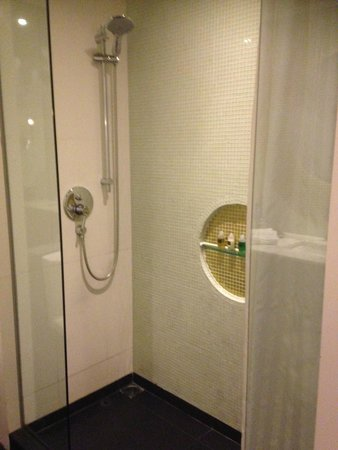 The Luxe Manor: Shower Room 702