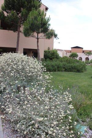 The Westin Resort, Costa Navarino: Территория