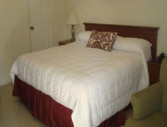 Sun N Surf Inn: 1 King Bed Room