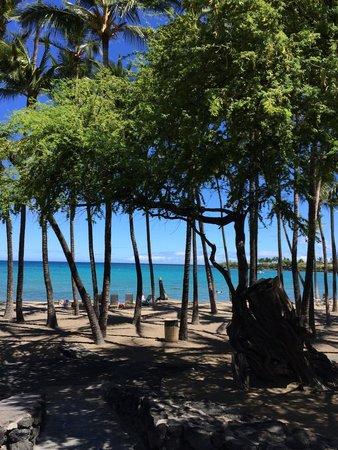 Anaehoomalu : Beautiful Beach