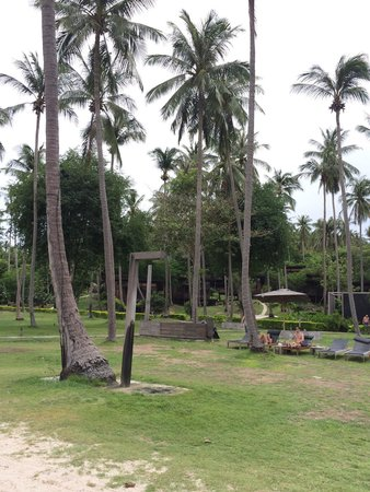 Haadtien Beach Resort: Huts