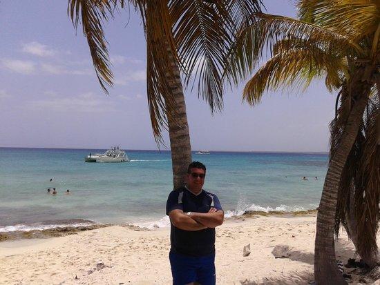 Isla Catalina : La playa