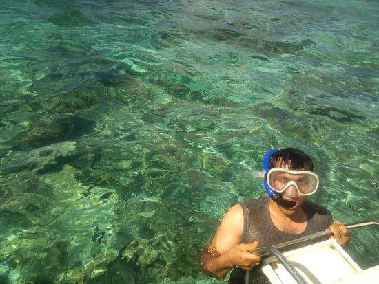 Tarisa Resort & Spa: Snorkeling