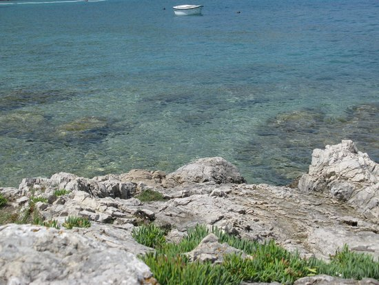 Island of Vis, Kroasia: The crystalline water from the rocks