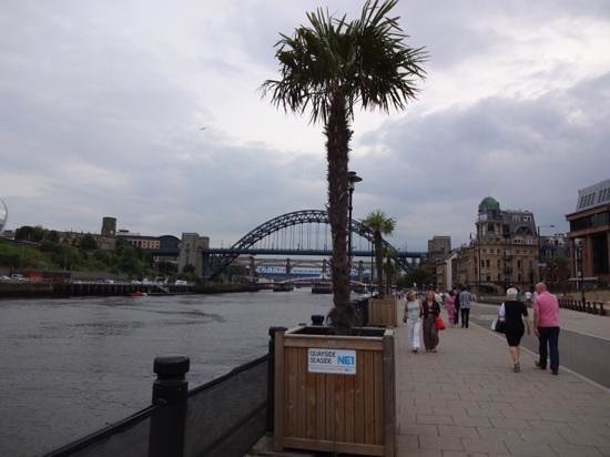 The Quayside : Even on a cloudy day, the palm trees makes it feel great!