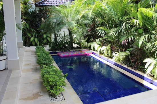 Bermimpi Bali Villas: Beautiful Plunge pool