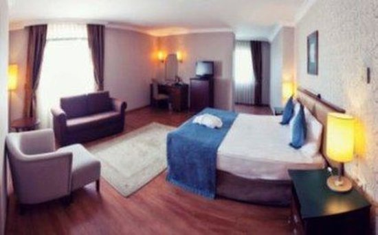 The Green Park Hotel Merter: Executive Room