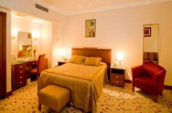 The Green Park Hotel Merter: Standard Room