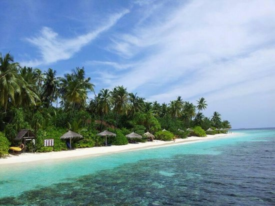 Robinson Club Maldives: The reef
