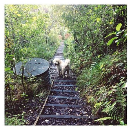 Sunlover Retreat: The walk down Paku with Jak