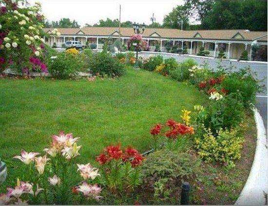 Americas Best Value Inn - Cheshire : Grounds