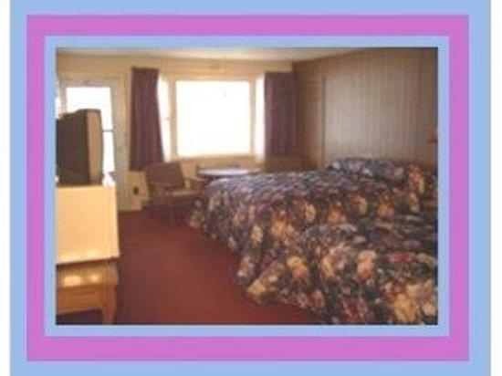 Berry Pond Motel : Window Beds Tv