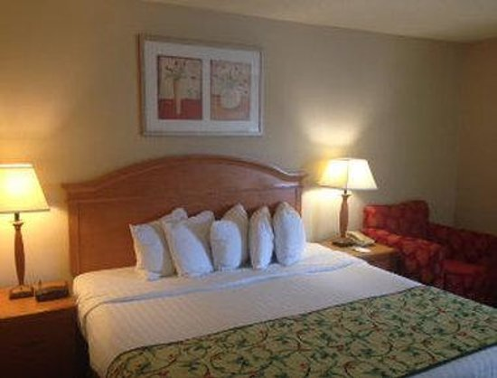 Baymont Inn & Suites Kalamazoo East: King Bed Room