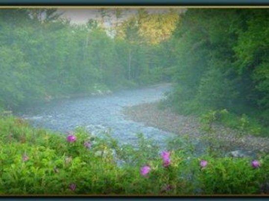 Cannon Mountain View Motel: River