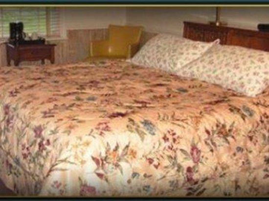 Cannon Mountain View Motel: Onebed