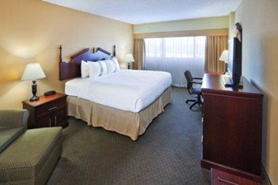 The Hotel at Wichita Falls: Guest Room