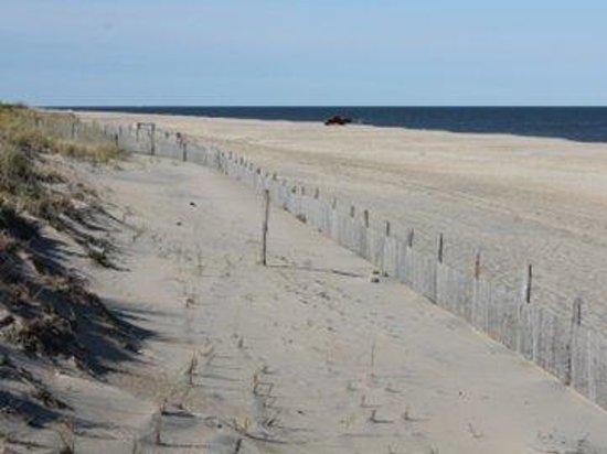Sands Motel: Beach