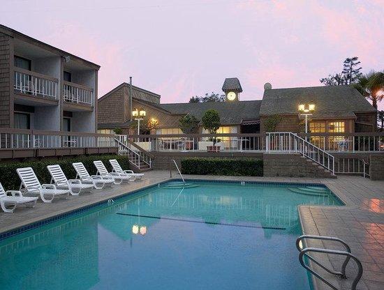 Hilton Garden Inn Los Angeles Marina Del Rey : Pool View