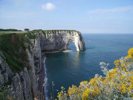 Falaise d'Etretat: falaise fleurie