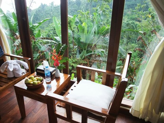 Munduk Moding Plantation: My favorite reading corner. Nice view and close to nature.