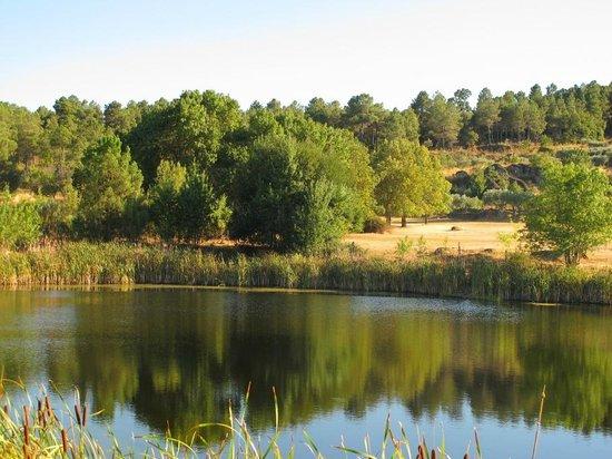 Casa do Redondo : lago