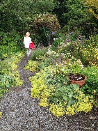 Cashel House Hotel : charmig bortglömd trädgård