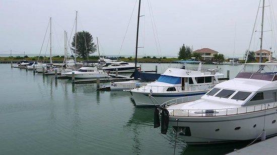 Avillion Admiral Cove : Yacht view