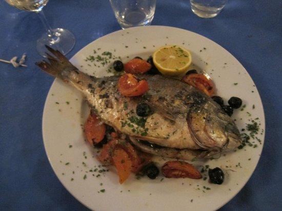 DA DINO: Pesce orata!