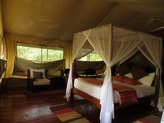"A ""permanent tent"" at Mara Leisure Camp - one queen bed, plus one single bed off to the side"