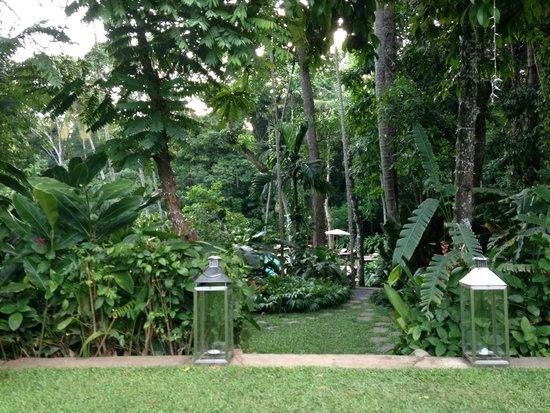 The Kandy House : Jardin