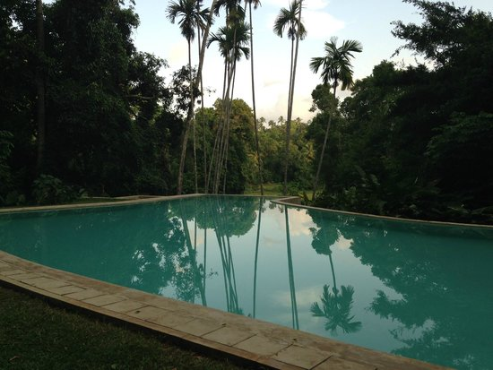 The Kandy House : Piscina