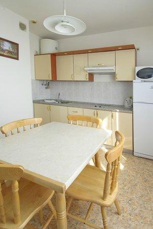 Eridan Aparthotel : Полноценная кухня с холодильником, чайником, плитой, вытяжкой.