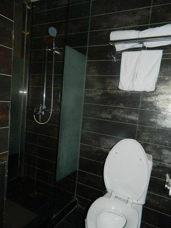 FX Hotel Shanghai Jinshajiang Road: туалет+душ