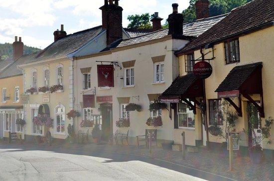 Stags Head Inn: Lovely quaint pub/restaurant