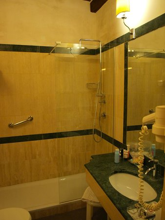 Duca D'Alba Hotel: Our bathroom with walk in shower