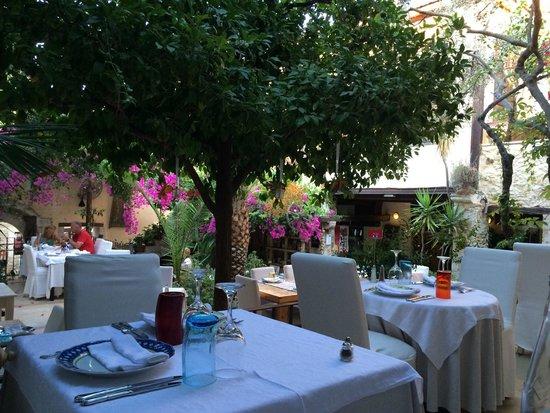 Avli: Пожалуй, самый уютный ресторан в Ретимно