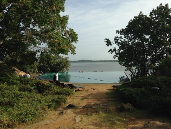 Heritance Kandalama: Piscina principal