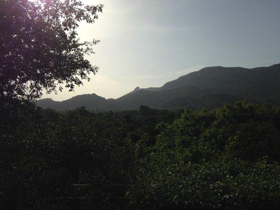 Heritance Kandalama: Vistas