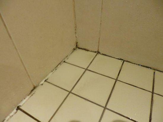 Hennessy Park Hotel : Poor maintenance