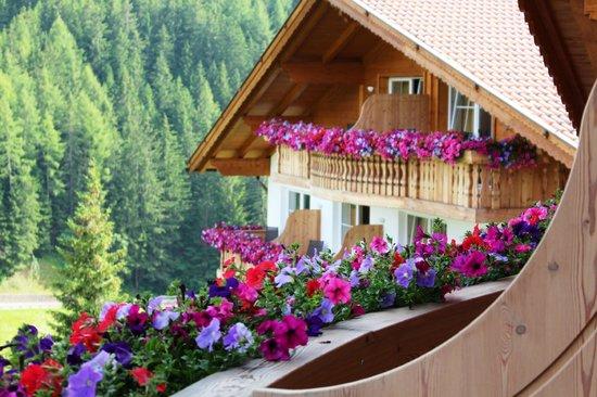 Hotel Scherlin : Dal balcone