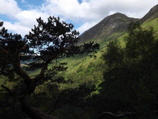 Glen Nevis Caravan and Camping Park: Stunning views