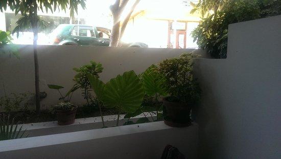 Petradi Beach Lounge Hotel : vue de la chambre côté rue